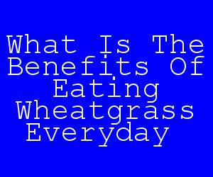What Is The Benefits Of Eating Wheatgrass Everyday.jpg