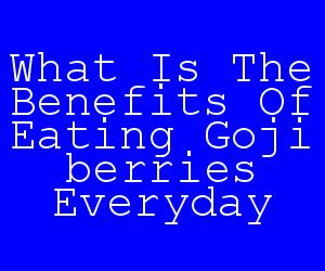 What Is The Benefits Of Eating Goji berries Everyday.jpg