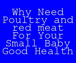 Why Need Poultry and red meat For Your Small Baby Good Health.jpg