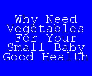 Why Need Vegetables For Your Small Baby Good Health.jpg
